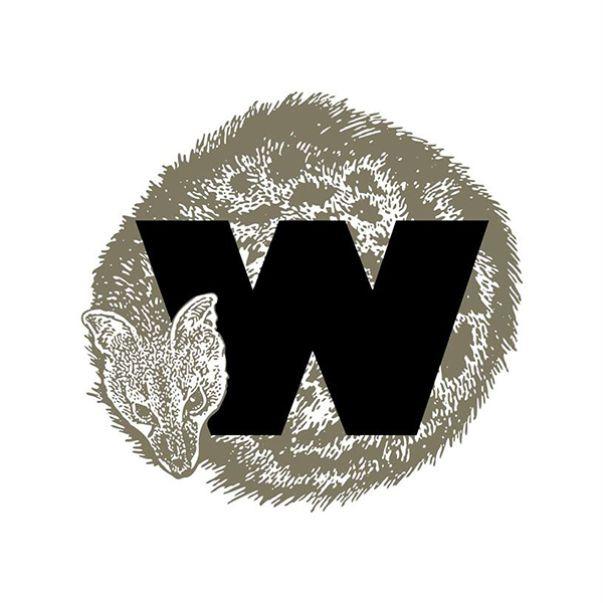 Este ano nasceram seis abutres-pretos no Alentejo